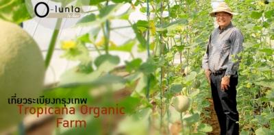 เที่ยวระเบียงกรุงเทพ Tropicana Organic Farm