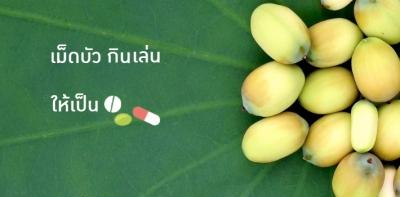 'เม็ดบัว' กินเล่นเป็นยา